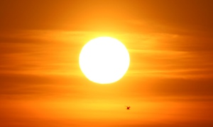 flygyal sun