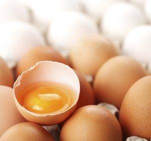 295d2ae18c17c604_egg.jpg.xxxlarge