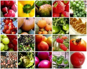 Fruits_Veggies Healthy vegetables all natural organic antioxidants cancer fighting nutrients fiber heart healthy water vitamin free radicals healing recovery health